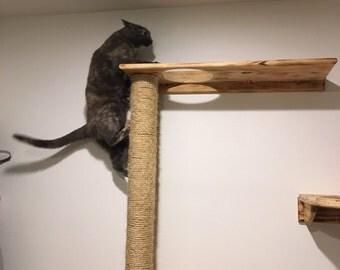 Cat Climber -n- Cat  Shelves