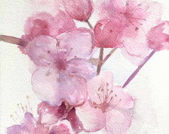 Plum blossom branch - 6x8 original watercolor painting - cherry blossoms, sakura, Japanese, pink flowers, impressionist, Mother's Day gift