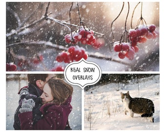 Realistic Snowfall Photo Overlay, Snow Overlays, Photo editing, Winter Effects, Real Snow Overlays, Christmas,Blowing Snow,Snow photo effect