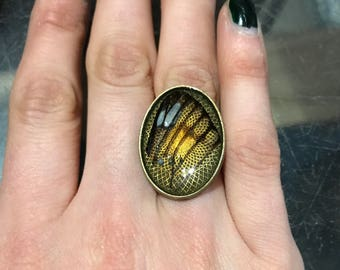 Butterfly wing ring on adjustable band