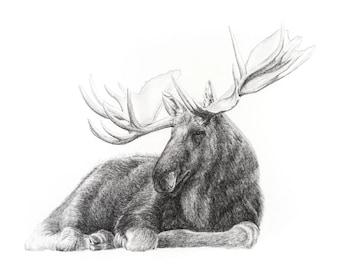 Moose Print 12x18