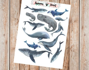 Vintage whales watercolor planner stickers