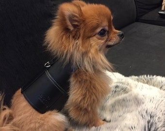 Gucci leather dog harness