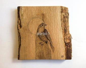 Pyrography art robin bird, woodburned dotwork feature wall art robin bird, original signed one of a kind artwork, rustic wood wall art bird