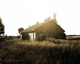 Barn photography, tilt-shift photography, barn ruins, abandoned barn, landscape photography, architecture print, haunting photo, sepia print