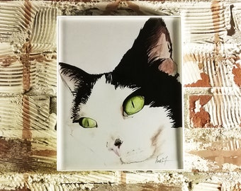 Sophie the Cat 8x10 - Print of Original Illustration by Me