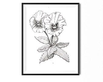 Pansy Print, Flower Art, Botanical Illustration, Blossom Floral Art, Flower Drawing, Botanical Print, Wild Rose Flora Print, Pansies Print