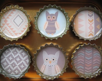 Recycled Bottlecap Magnet Six Pack in Tin w/Lid, Gift Box Set by Lucy Bright, Hot Springs,AR, Strong Magnetic Beer Caps Graphic Designs Owls