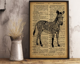 Zebra Print Animal Poster Dictionary Art Print, Zebra Vintage illustration wall art, Animal Art Poster, Safari Decor (A11)