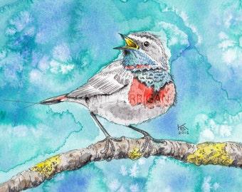 Bird archival print, watercolor bird original artwork printed on watercolor paper watercolor painting print bird print, wall decor, wall art