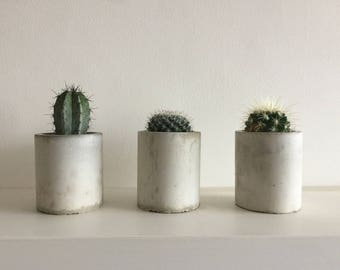 Concrete Succulent / Cactus Planter / Handmade Plant Pot / Planter For Air Plants