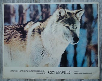 Vintage Lithograph - 1974 Cry of the Wild poster - Lobby card lithograph - 1974 Cry of the Wild lobby card - Movie ads - Wolf poster - Litho