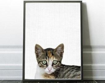 Kitten Print, Kids Print, Kitten Wall Art, Printable Decor, Kitten, Cat Photography, Cat Wall Art, Nursery Art Decor, Fall Decor Trend, Gift
