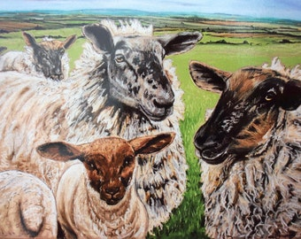 Waiting..... sheep print