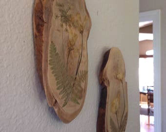 Set of two Pressed Flowers on hanging wood slice made from Eucalyptus