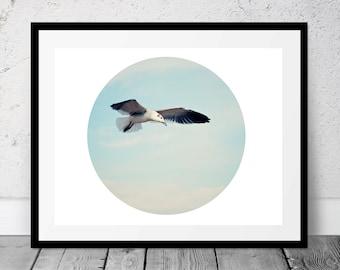 Coastal Photography, Printable, Seagull, Digital Download, Beach Photography