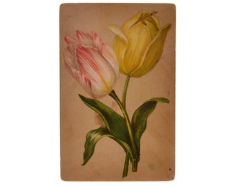 Original Vintage Color Postcard Flowers Tulips Drawing Antique 1912 Russia Collection Old Poscard Greeting