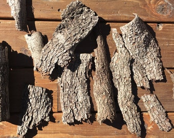 Real Tree Bark | Oak Bark | Terrariums supplies | Fairy Houses | Natural Crafts | Terrariums Bark | Woodland Decor | Natural Craft Suppies