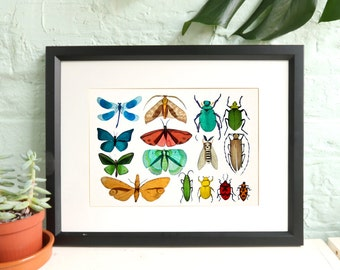 Butterfly print / Nature Collection / A3 art print / Beetle Illustration