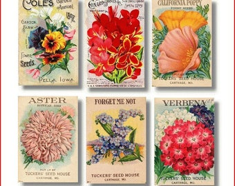 cards, seed packet, garden, flowers, note cards,