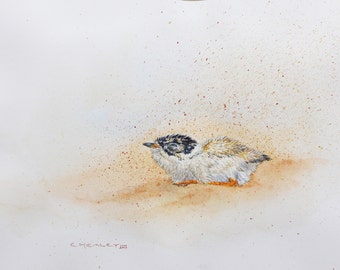 Hooded Plover Chick (in sand storm), original watercolour bird painting