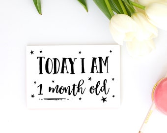 Printable Baby Milestone Cards, Baby Age Photo Signs, 12 Month By Month Baby Photo Props, Digital Download, 4x6 Rectangle Signs