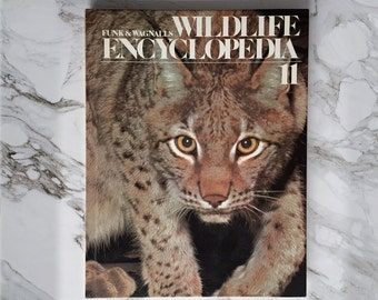 Wild Cat Coffee Table Book