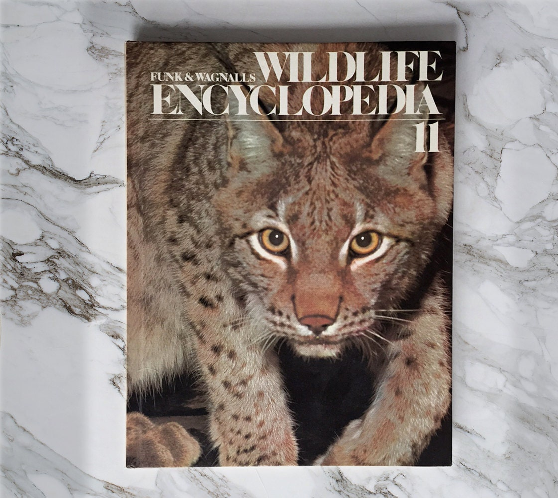 Cat coffee table book images coffee table design ideas wild cat coffee table book details funk wagnalls leopard coffee table book geotapseo images geotapseo Choice Image