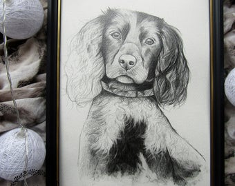 Custom Pet Portrait, Drawing, Pet Memorial, Cat, Dog Portrait, Gift from Your Photo, Gift Idea, Pencil Drawing, Animals, Original Artwork