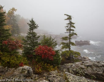 Schooner Head in Fall Colors, Acadia National Park, Red,Rocks,Ocean Waves,Autumn, Fog, Maine,Trees, Fall Color