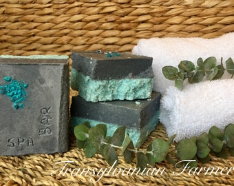 Eucalyptus Spa Bar Salt Bar Activated Charcoal Soap Bar Soap Bentonite Clay Soap