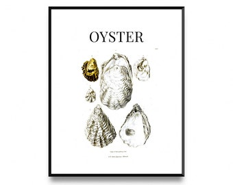 Oyster print, nautical print decor oyster painting, oyster prints, beach house artwork, oyster shell prints, Kitchen Print, Printable Art