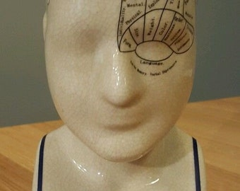 "Phrenology Head - 9"" Ceramic - Brand New"