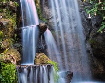 Los Angeles Arboretum Waterfall