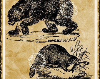 Beaver and Bear Vintage Digital Image Printable/Graphic