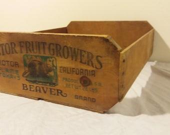 Vintage Victor Fruit Growers Crate