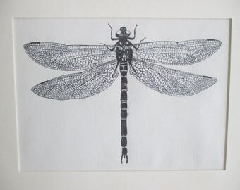 Dragonfly Insect Ink Drawing