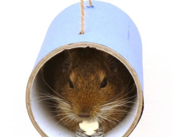 Chewchewbs (Blue) - Small pet toy, degu, rat, gerbil, hamster tube.