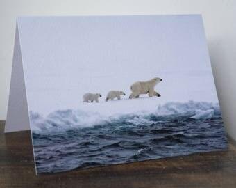 Best Paw Forwards, Polar Bear, Mother and Cubs, Arctic, Ice, Ocean, blank card