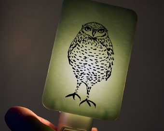 Burrowing Owl Nightlight on Willow Green Fused Glass Night Light - Gift for Baby Shower or Nature Lover - Illustration Owl
