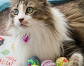 Whitaker's Favorite Crocheted Catnip Toy (Set of 2 RANDOM COLORS)