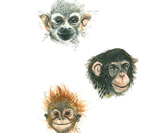 Happy Apes - Print of a Watercolor Orangutan, Chimpanzee, and Monkey