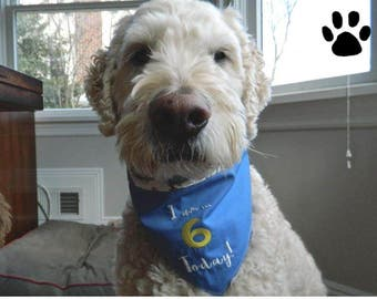 Dog Birthday Bandana, Dog Bandana, Birthday Gift to Dogs, Pet, Pet Gift, Message, Reversible Bandana, Personalized Bandana, Customized