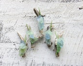 Custom Order for Taneal 5 Seaglass Boutonnieres