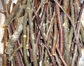 Phoenix Farm Organic Wood Gnawers (c) SAMPLE Size Choice Apple Pear Crabapple Blueberry Chew Sticks Fresh Treats for Rabbits