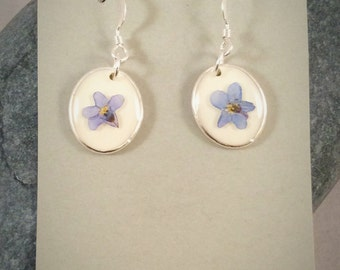 Forget me not silver earrings