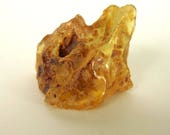"Frog shape Natural Colombian Amber Copal specimen with natural hole. Chunk of amber . 60 x 70 mm. 2 1/2"" x 2 3/4"". CAC003"
