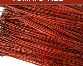Pine Needles for Gourd Art or Basket Coiling - Dyed Florida Long Leaf  - TOMATO RED