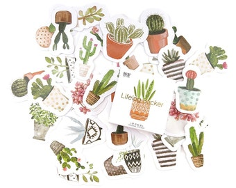 Cactus Stickers - Succulent Stickers - Cute Stickers - Sticker Pack - Paper Stickers - Decorative Stickers - Labels - Stickers Australia