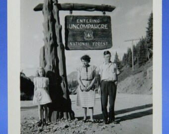 Uncompahgre National Forest 1948 Colorado Vacation B & W Photo Snapshot 15963
